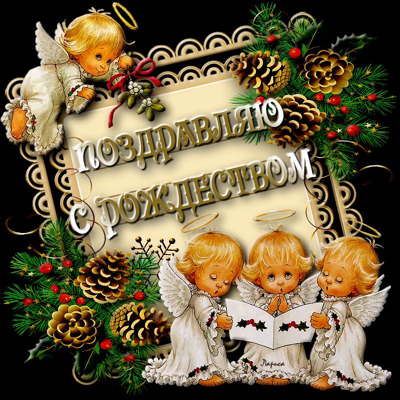 поздравление с рождеством в сообщение крупных цветов