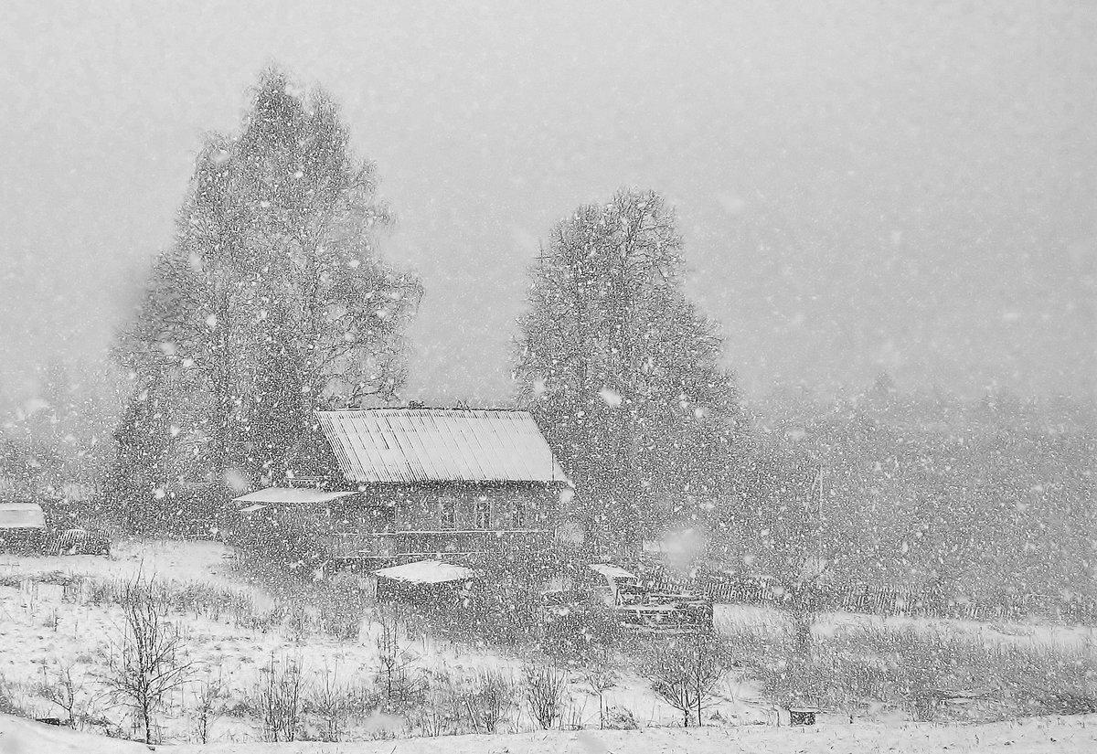 Картинки первого снега в деревне