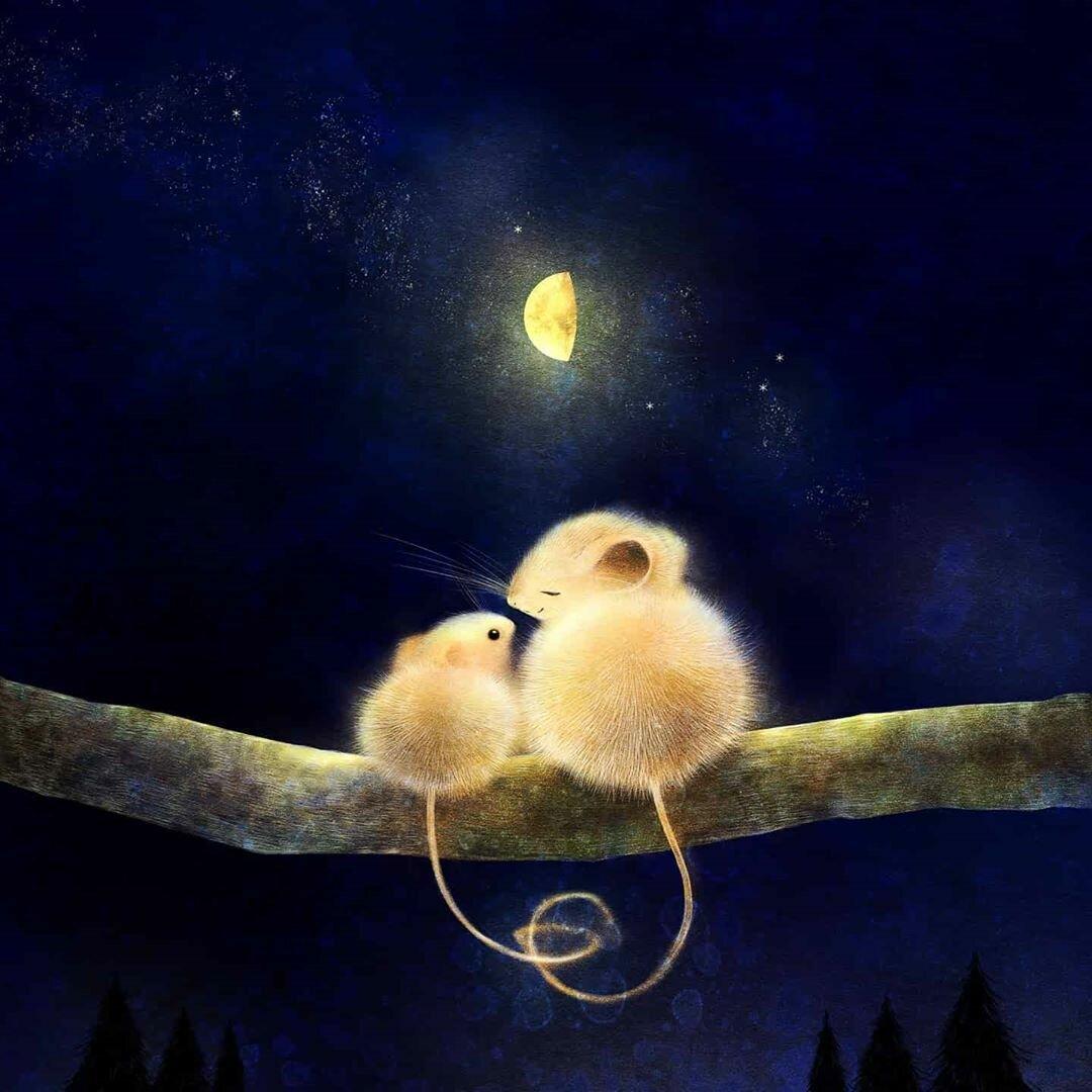Картинки мышка спокойной ночи