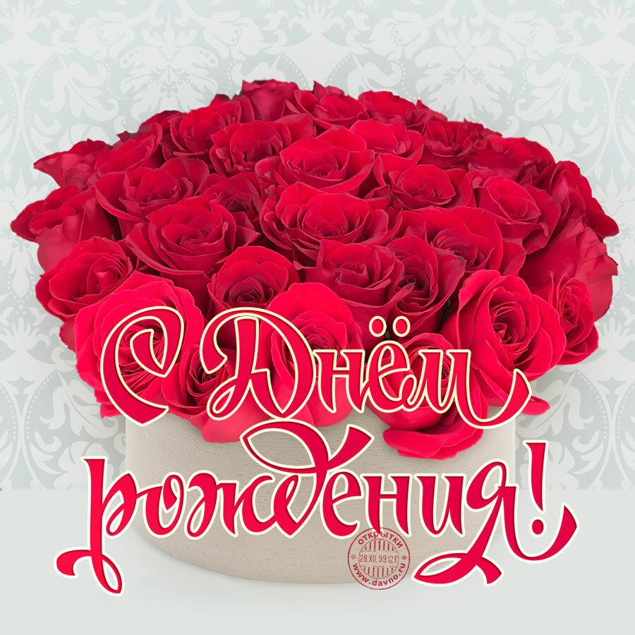 с днем рождения роза пожелания