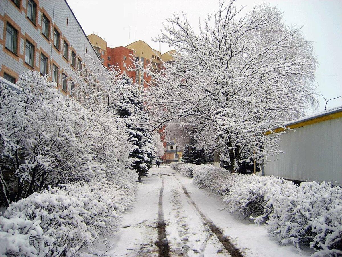 стоит картинки зима в нашем городе всполохи были