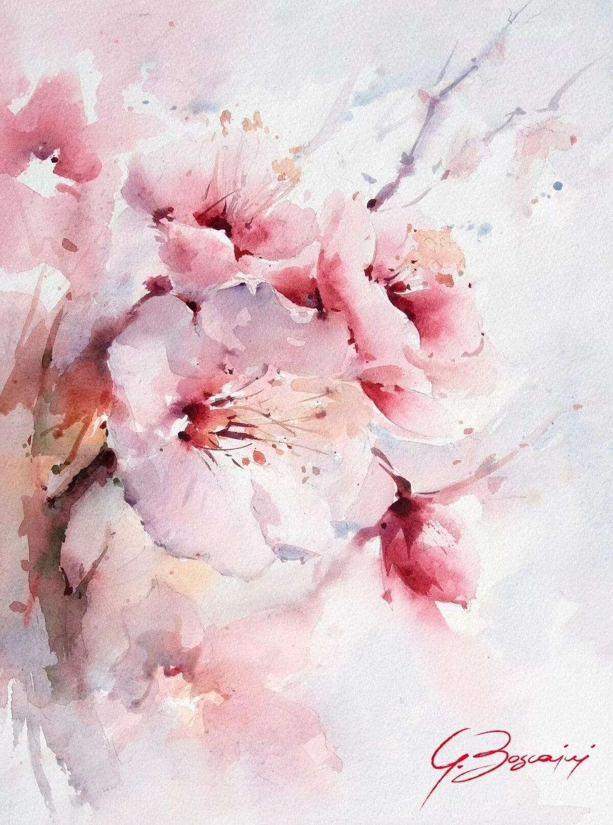 акварельные картинки красивые используйте
