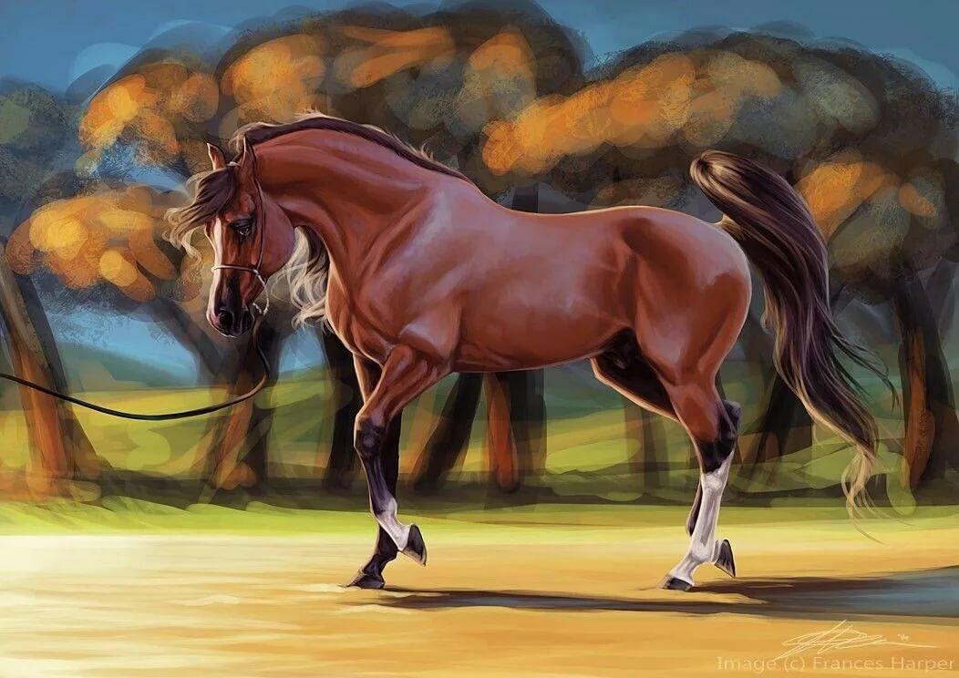Картинки кони в стиле аниме