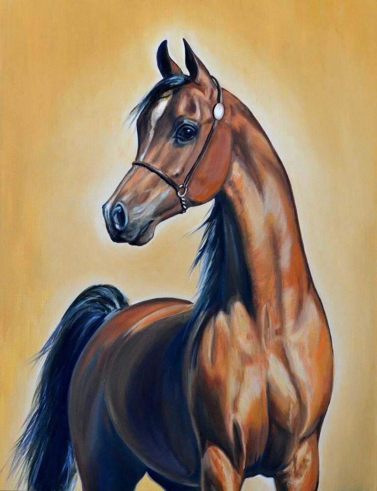 рисунки с лошадьми красивые