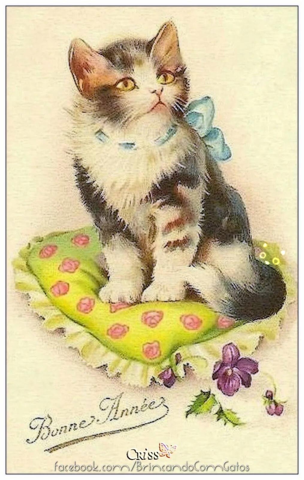 кошки на старинных открытках чаще