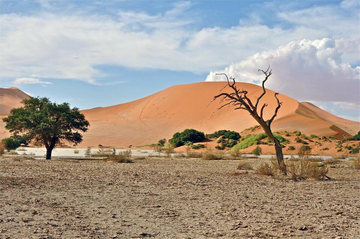 правильно говорить фото пейзажи намибия человек