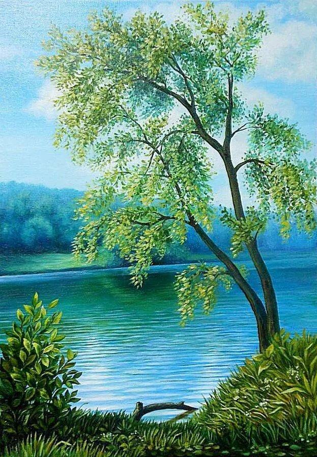 рисунок с деревом и водой зеленый