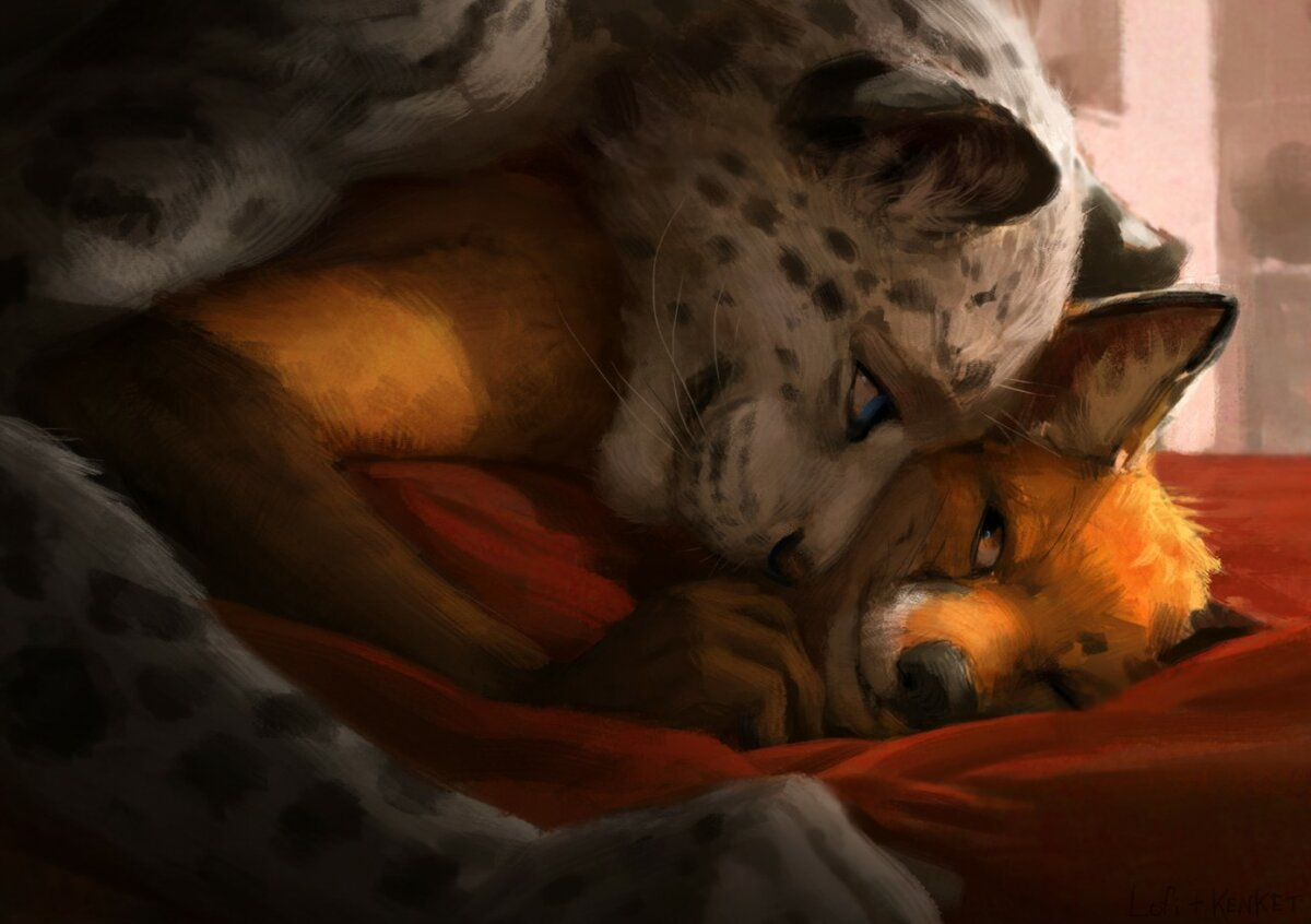 Картинки рысь и лис