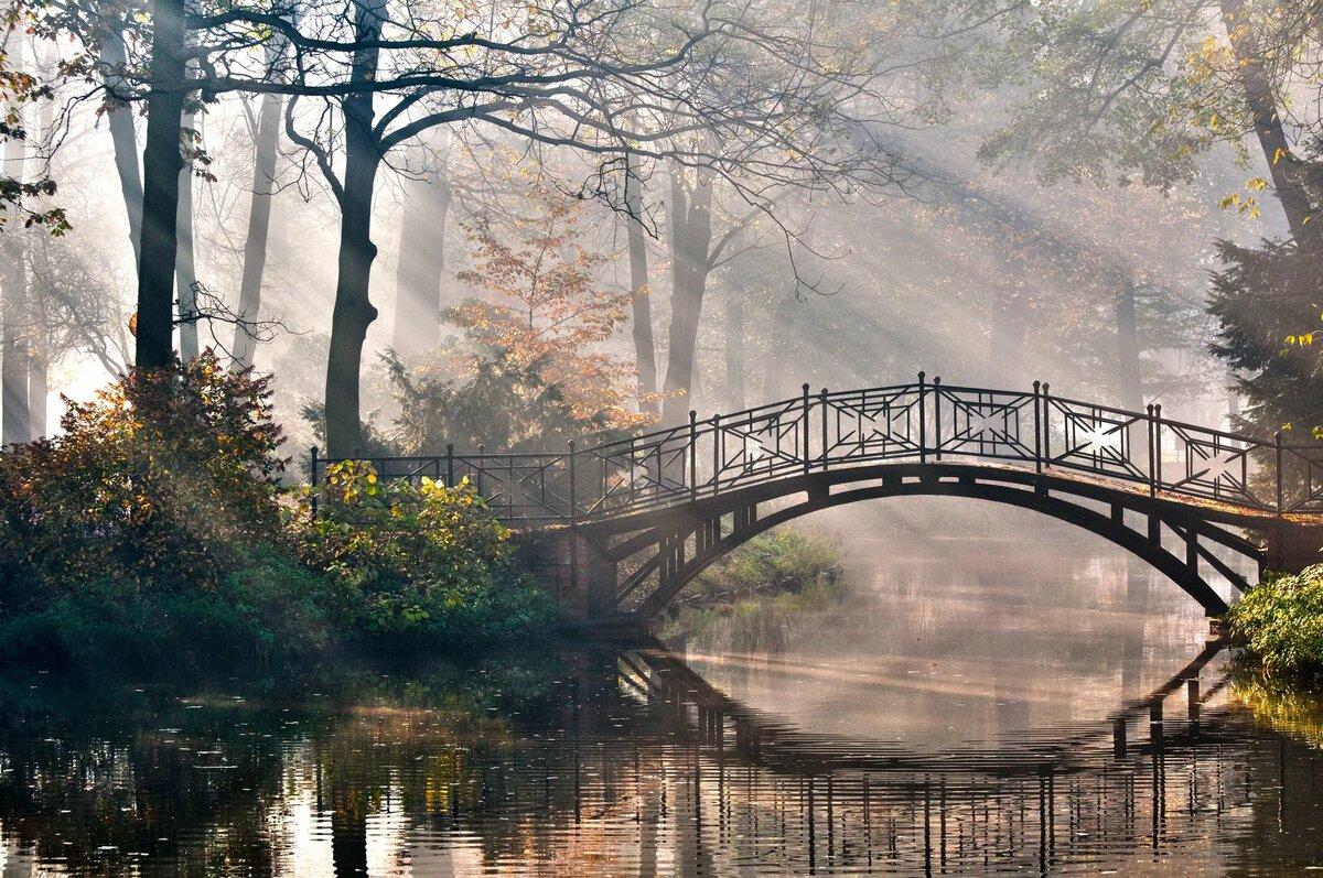 картинки три дома река мост деревья
