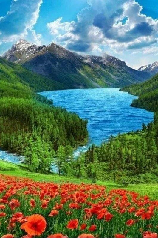 самые красивые природные картинки