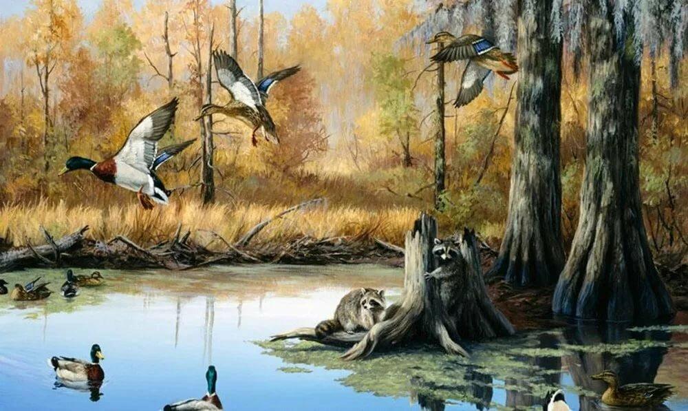 картинки охотники на птиц баффет непритязателен