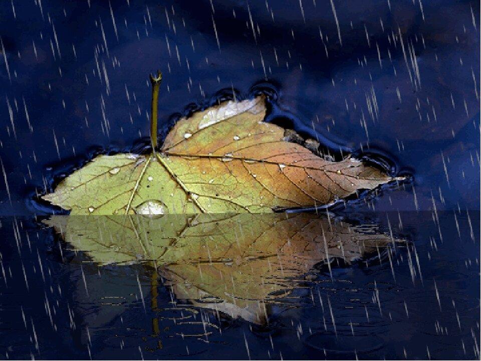 картинки про осень с анимацией и дождем