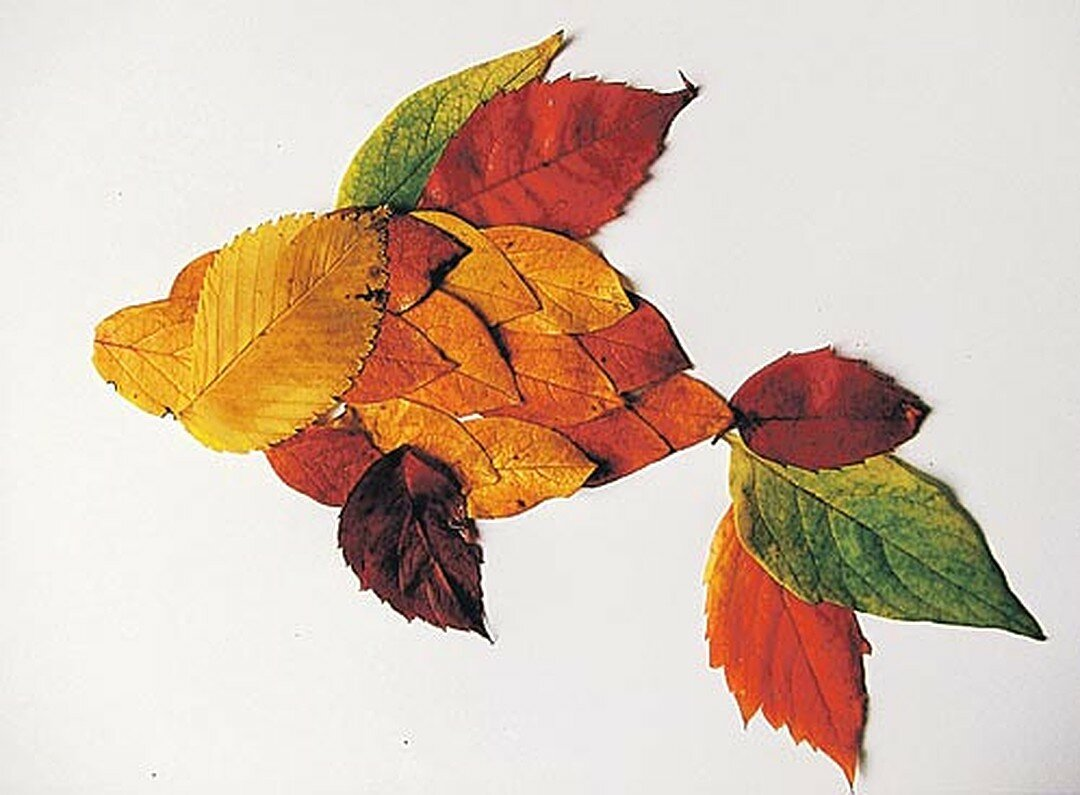 Картинки работы из листьев