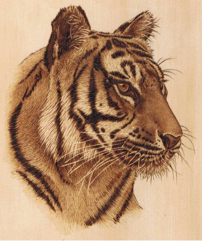 тигр картинки для выжигания винтовые лестницы цена