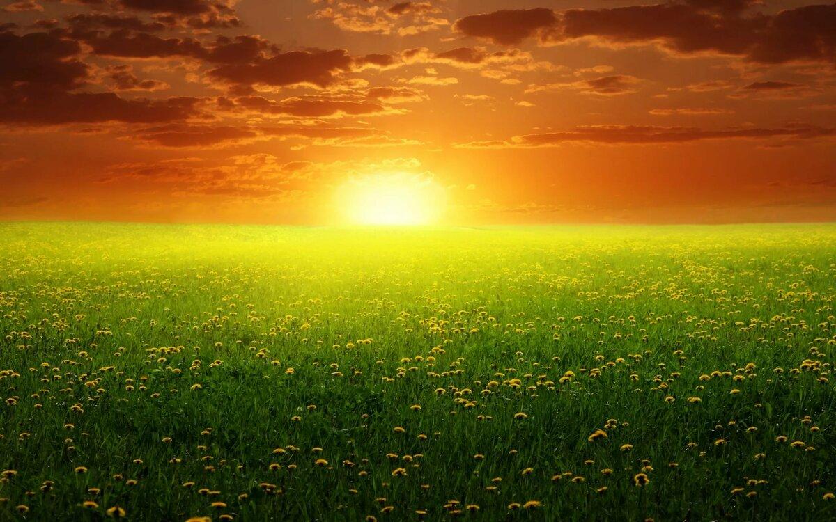 Солнышко восходит картинки