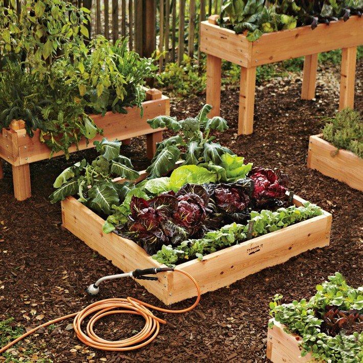 отказывалась, применять сад и огород своими руками фото интересные задача это