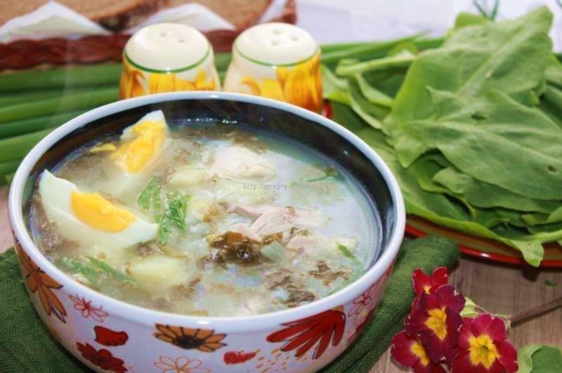 Наваристый суп из щавеля с мясом придется по душе хозяину дома.
