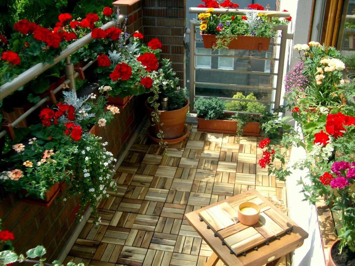 Озеленение балкона: фото интересных идей.