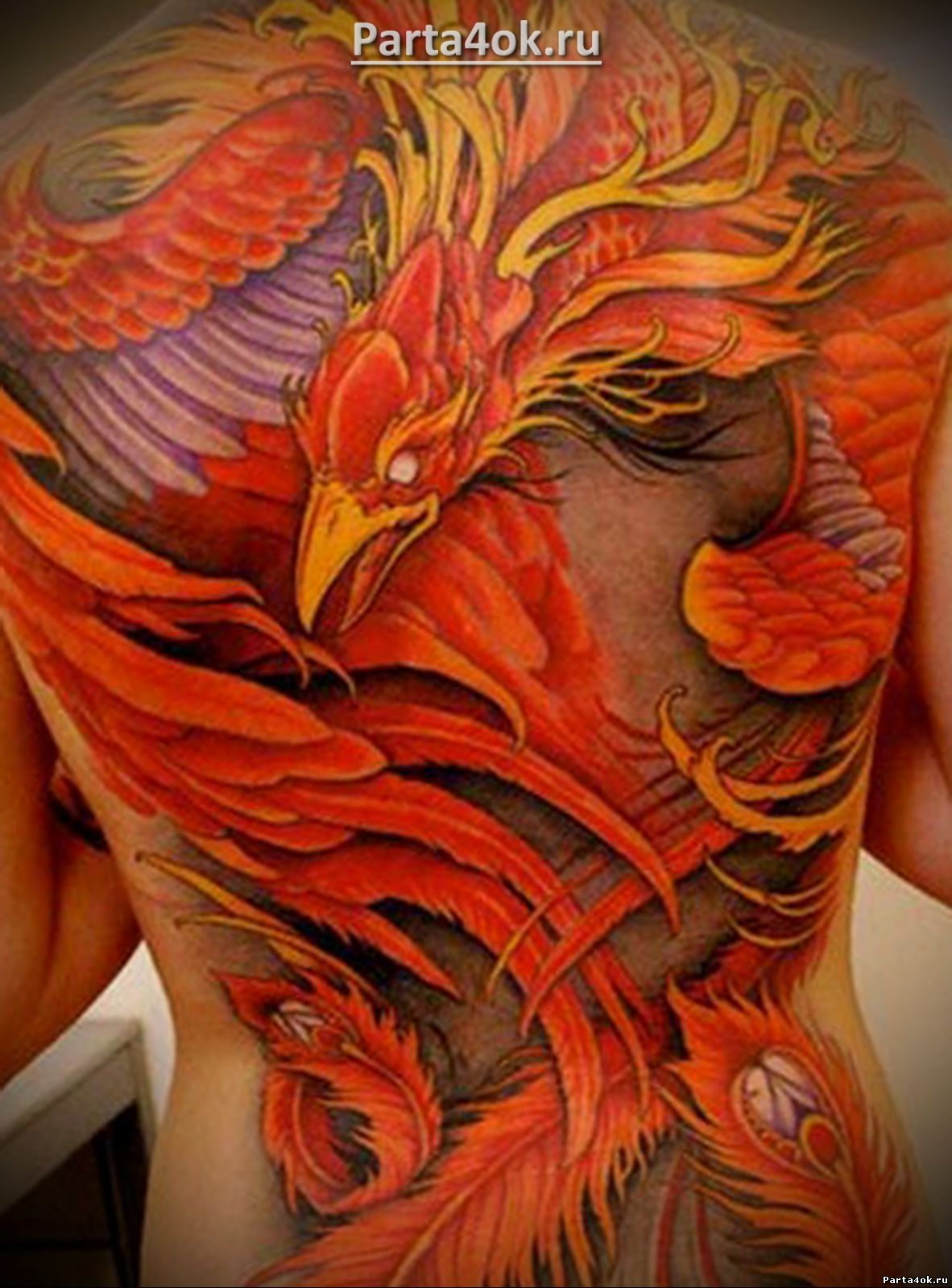 фото феникс мужская на спине тату