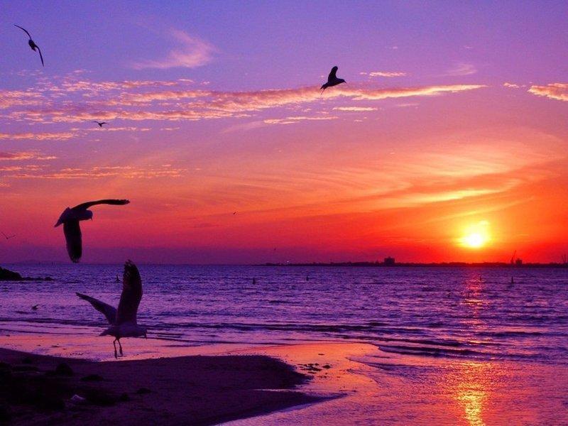 Красивый закатмечта