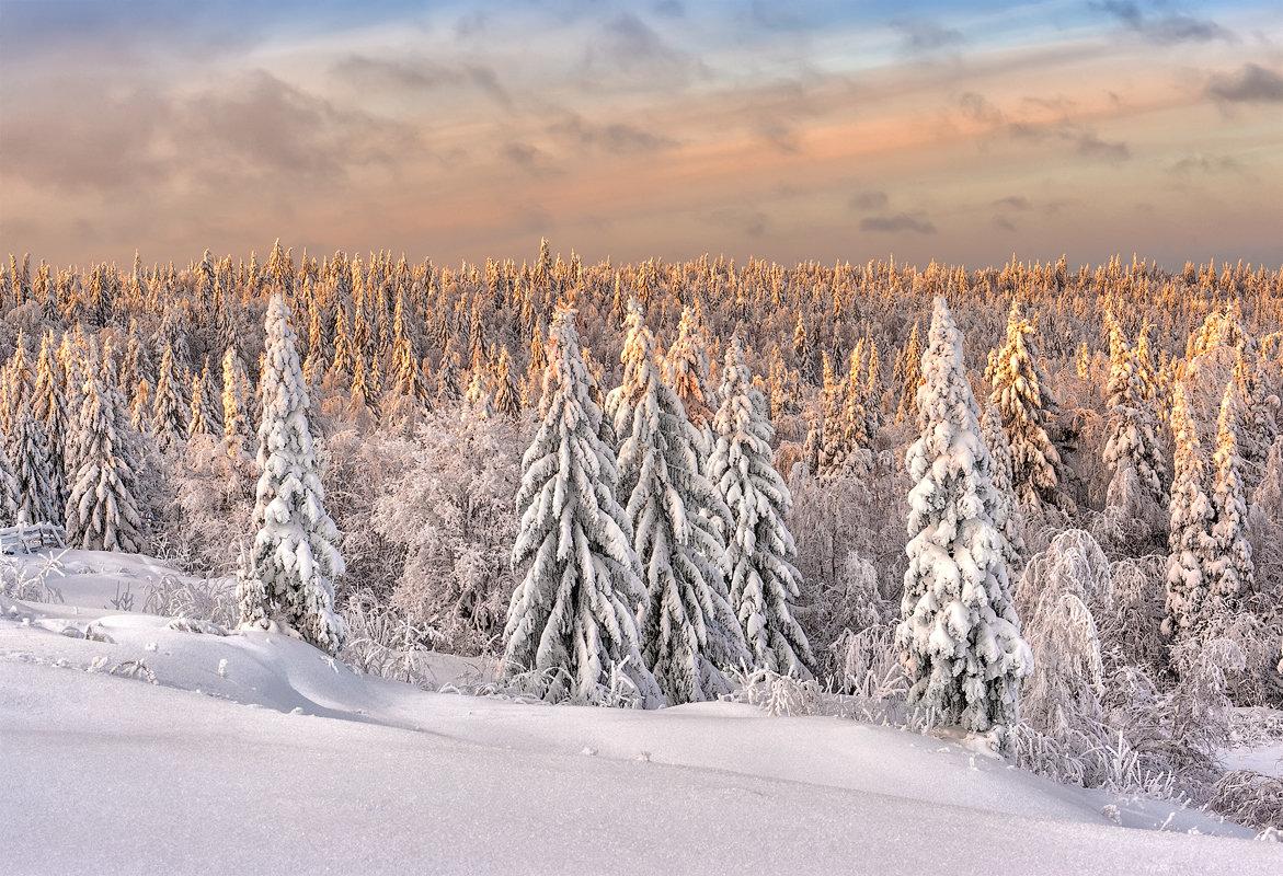 фото, фотографии русской зимы причина привлекательности