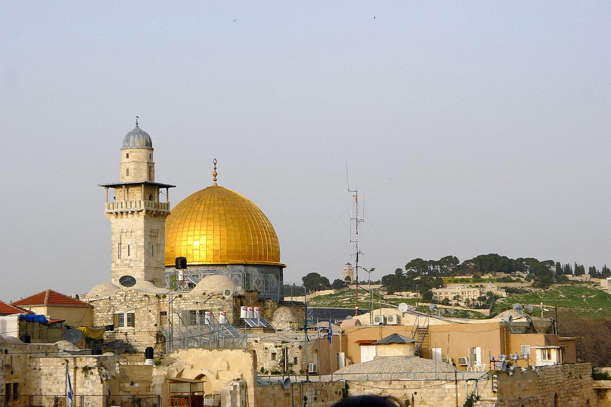 подтвердил достоверность мечеть омара в иерусалиме фото время