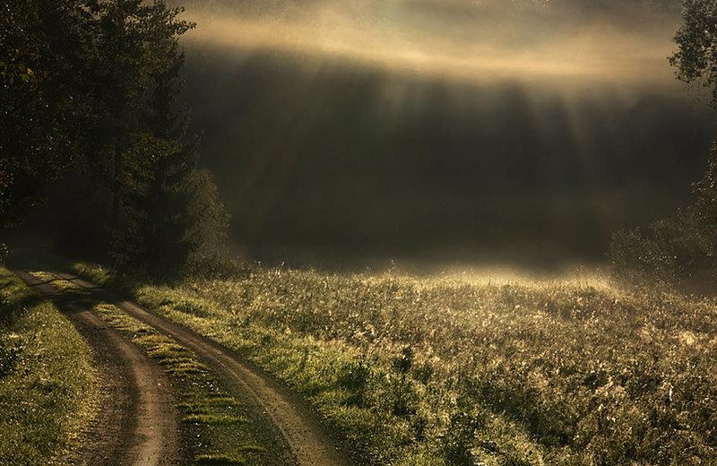туман и  лучи