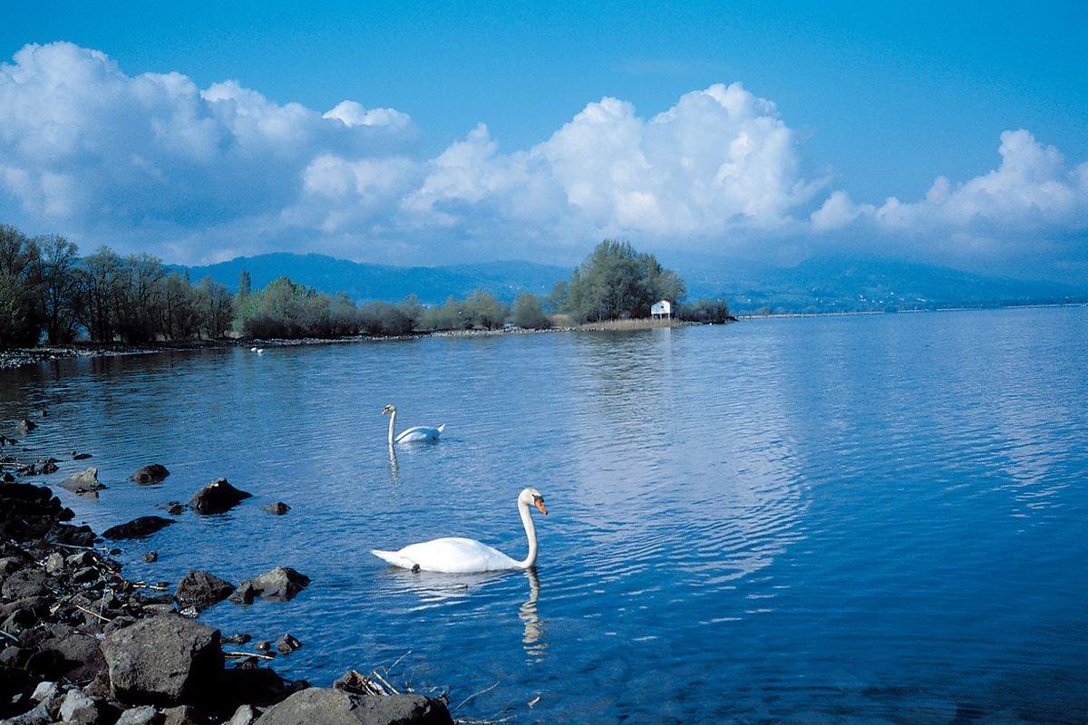 Картинки озера, картинки аватарки открытки