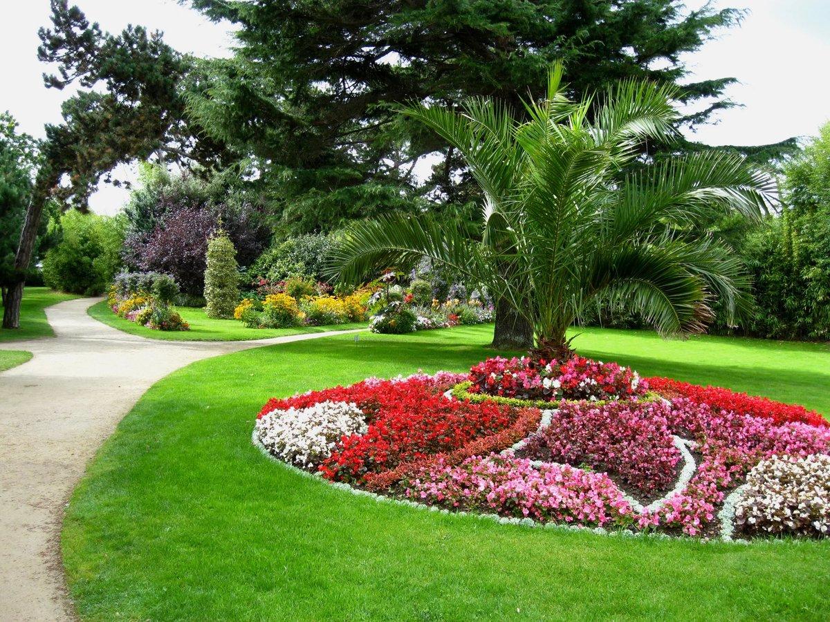 Дизайн цветников и газонов фото вдохновения каждый