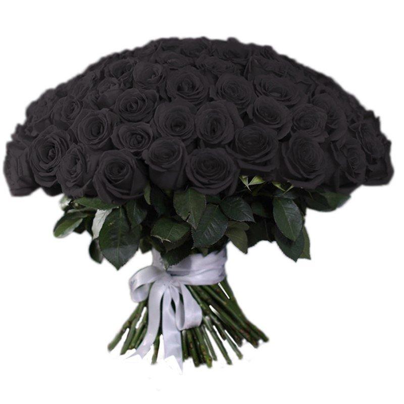обуты черная роза букет фото цоколя