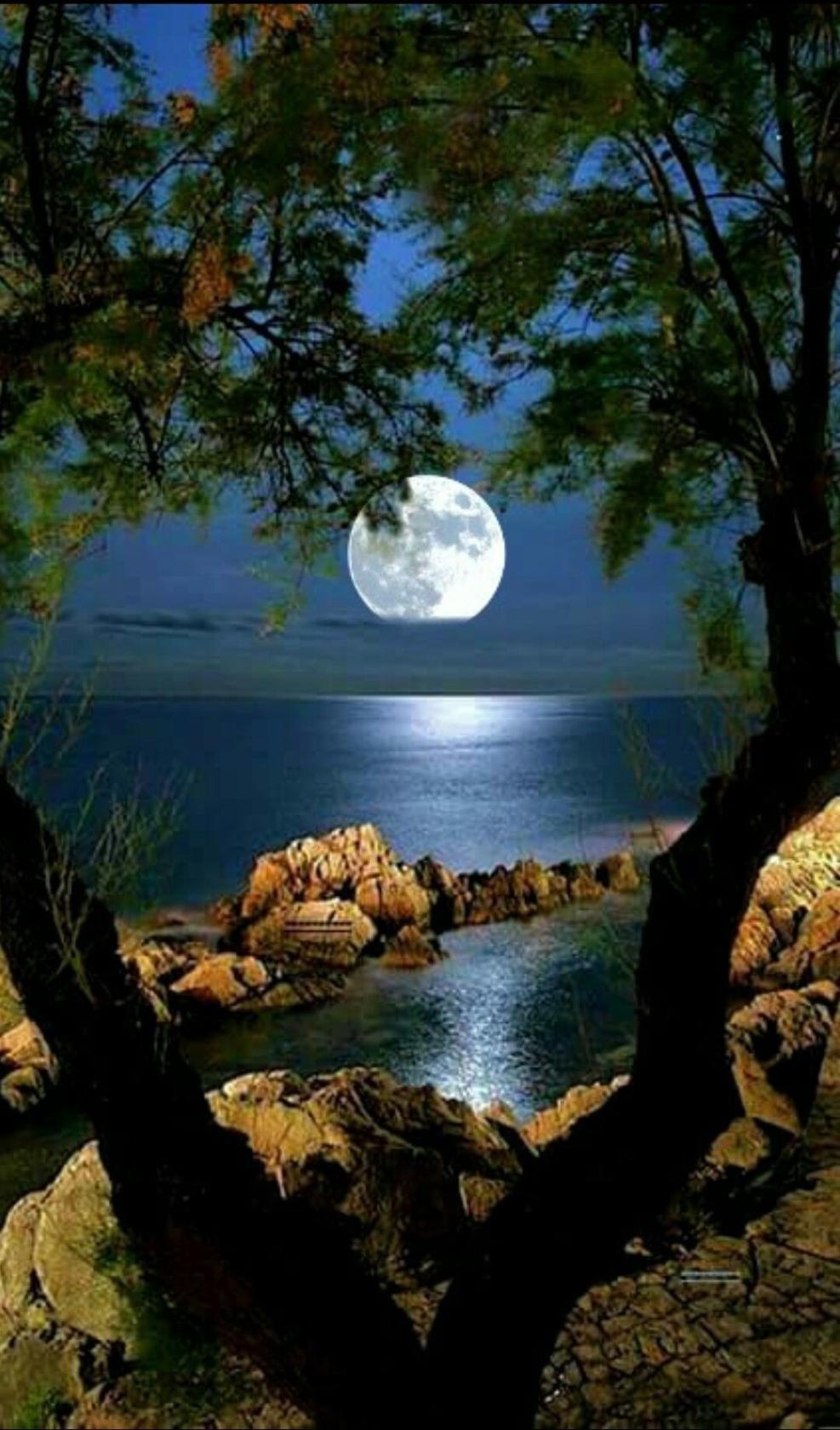 Картинки ночи спокойной природа, доброго