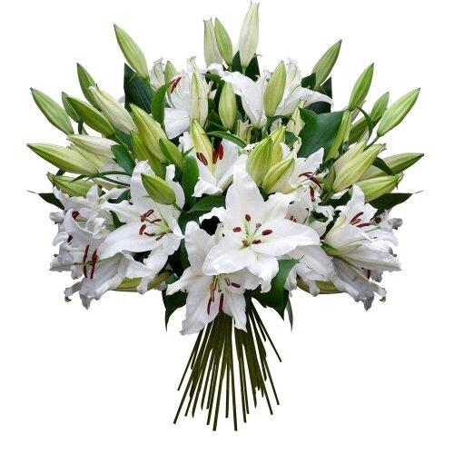 Что символизируют белые цветы