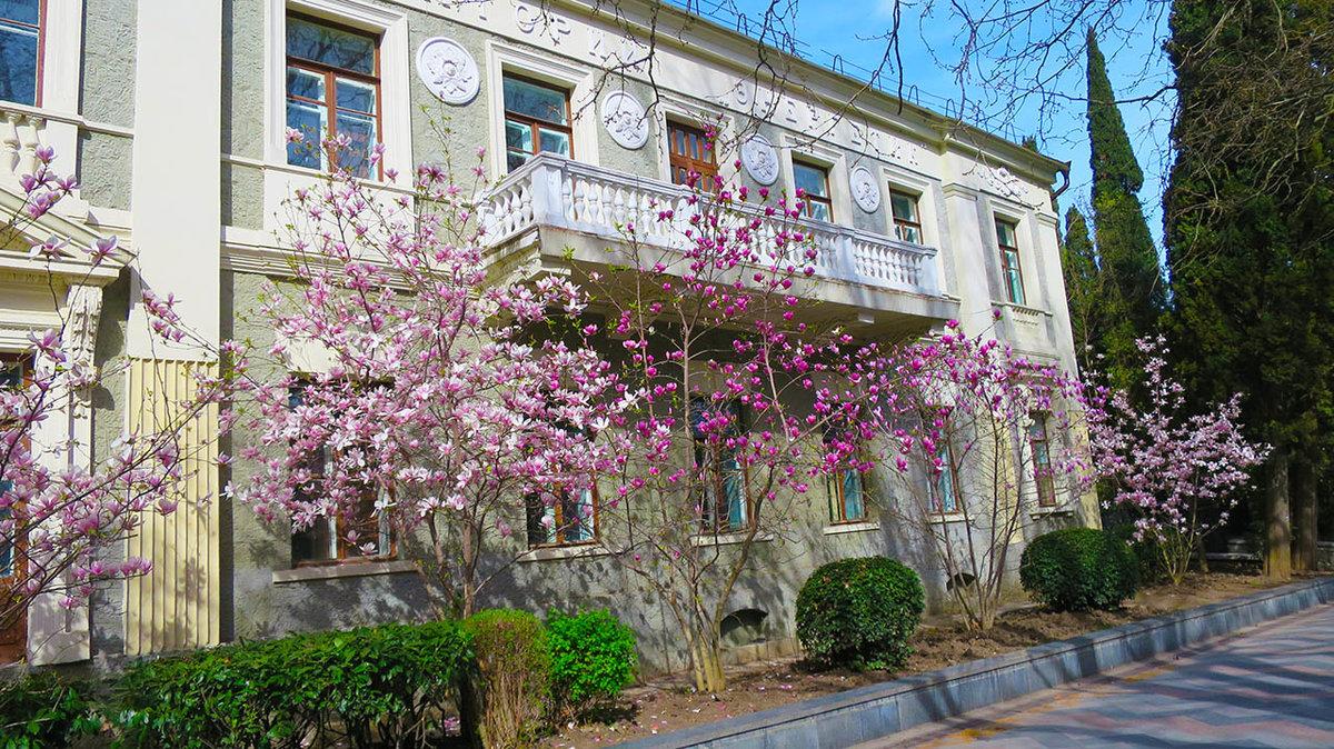 весна на набережной ялты фото дозвол двухстороннее польское