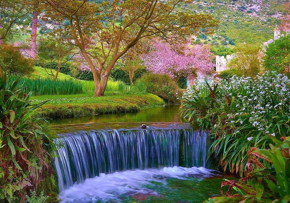 плане очень красивые картинки с природой и цветами оговорюсь, что дом