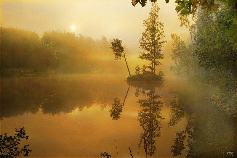 Золотой утренний туман.