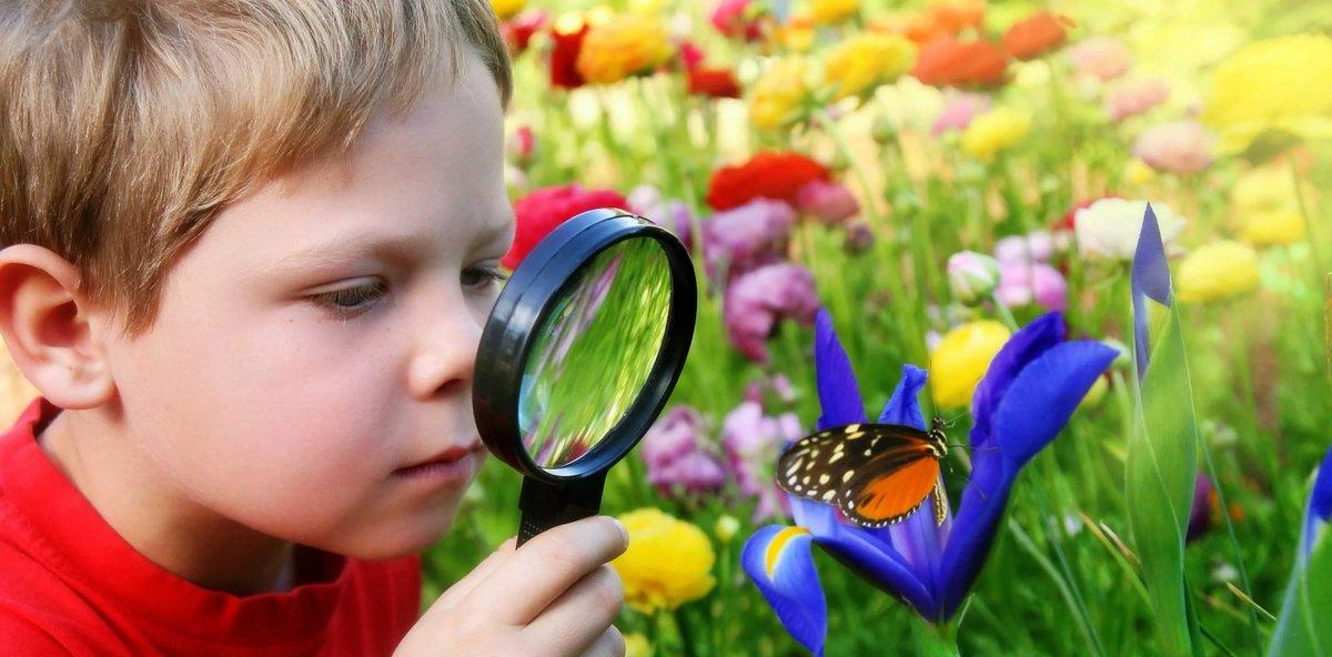 Женщине, ребенок и природа картинки