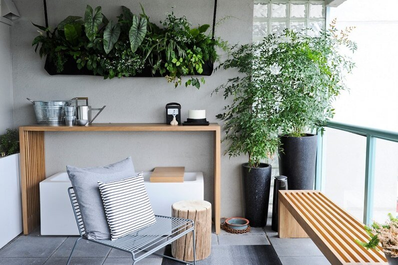 растения и цветы в интерьере Комнатные растения и цветы в интерьере