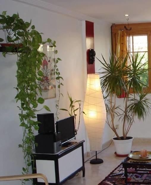 Растения играют очень важную роль в  интерьере  любой комнаты