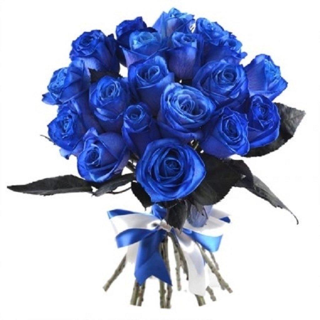 Картинки дети, картинки букет синих роз