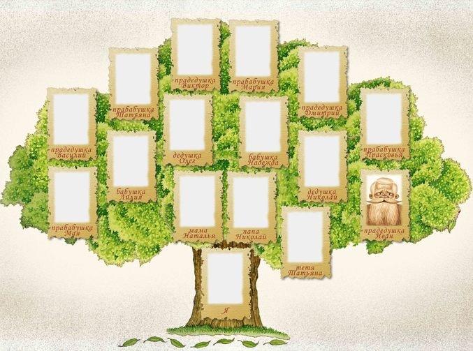 Картинка родословное древо шаблон для школьника