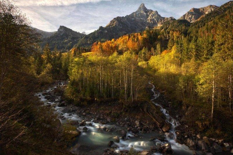 Красота русского леса.