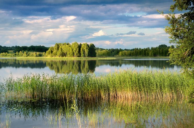 Природная красота   Latvia.eu По территории Национального парка Гауя протекает одноименная река,  являющаяся самой длинной в Латвии. В ее долине есть крутые склоны и ущелья,  ручьи, ...