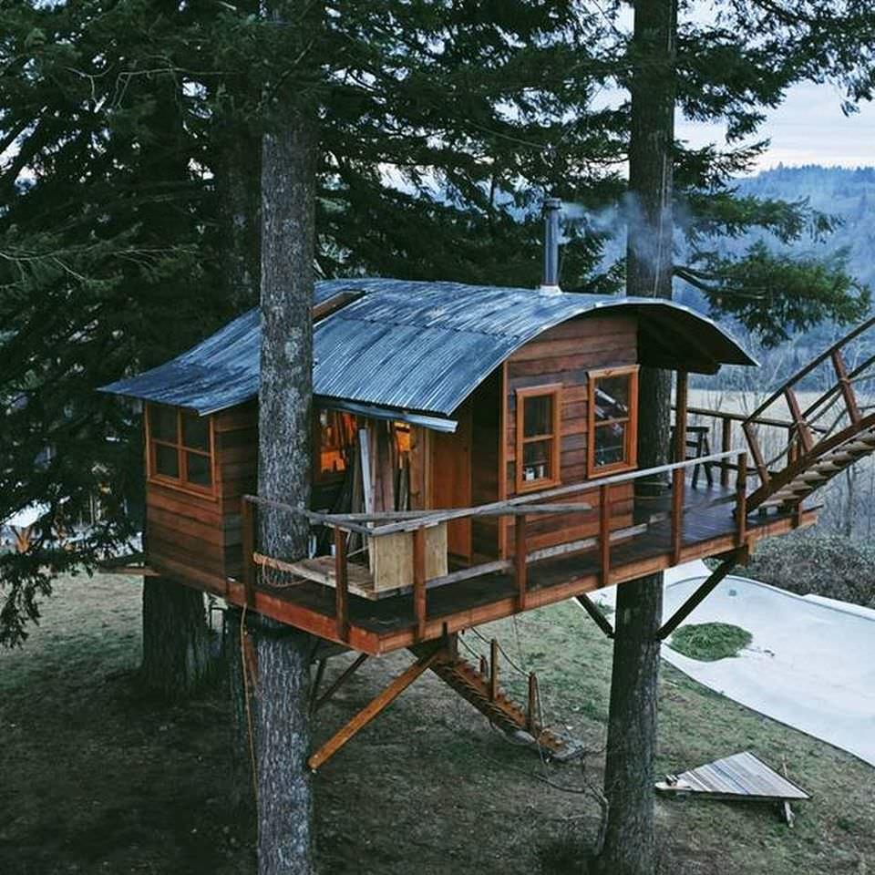 снял дом на дереве в лесу фото можете
