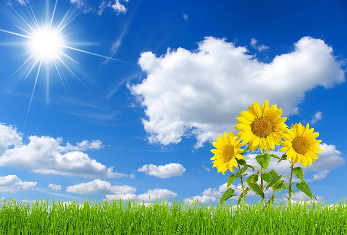 Открытке, картинка небо с облаками и солнцем для детей