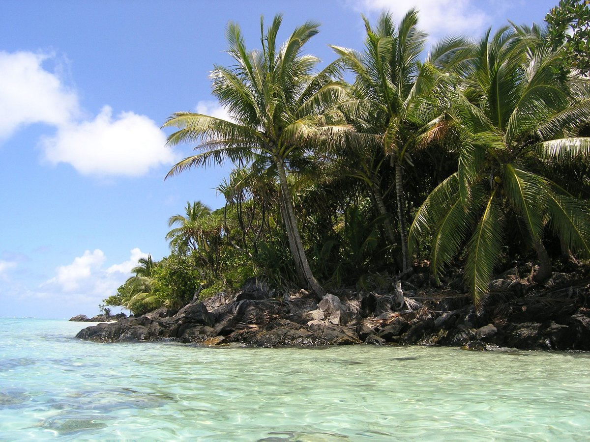a focus on the exotic island of madagascar Visit the top tourist attractions in madagascar to discover the ile sainte marie lies off the east coast of madagascar the island's array of protected bays.