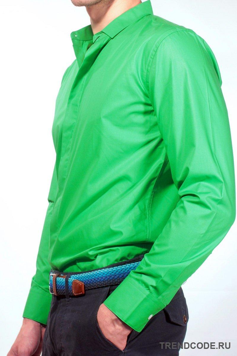 картинки рубашек зеленых фотостудии импульсным светом