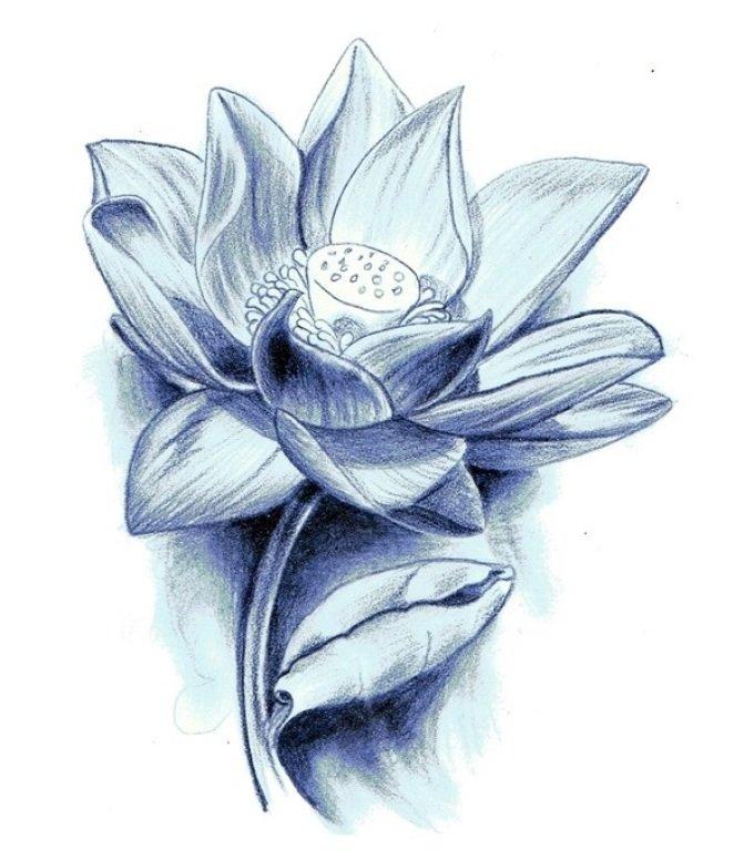 лотос цветок рисунок тату сделали основу