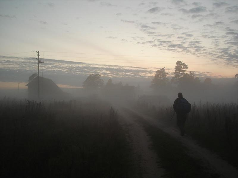 Туман укрыл лощину