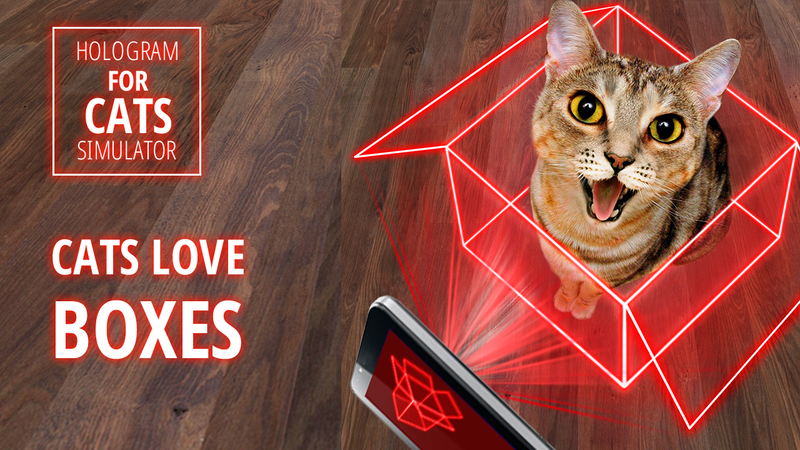 Голограмма 3д кот симулятор