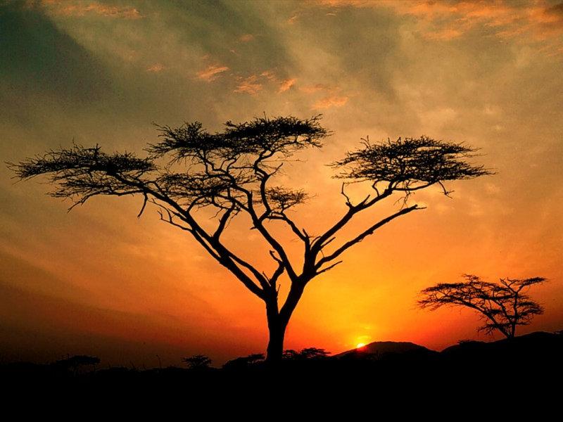 Закат в Кении